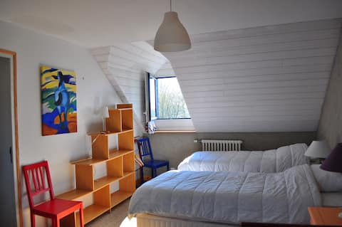 Europe room, renovated in ecological materials