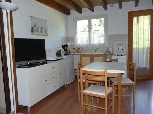 La Bergerie : appartement T3 rénové - Talloires-Montmin - Condominium