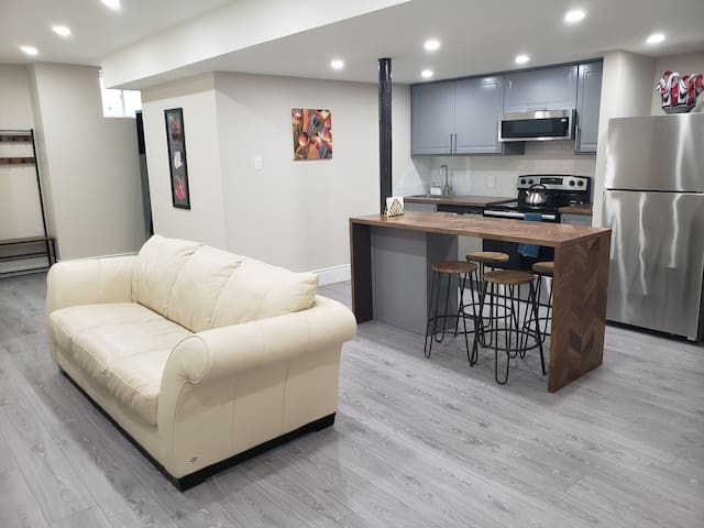 NEW Upscale Modern Clean 2 Bedrm Apt High Ceilings