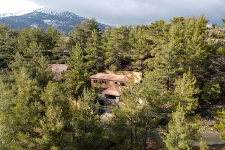 Kardama HideAway - Unique stay at the Forest Heart