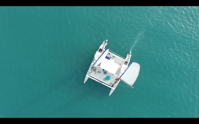 Camping + Private Catamaran in Angtong Marine Park
