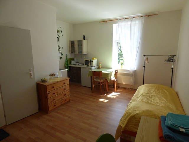 Ubytování blízko centra. - Ústí nad Labem - Apartament
