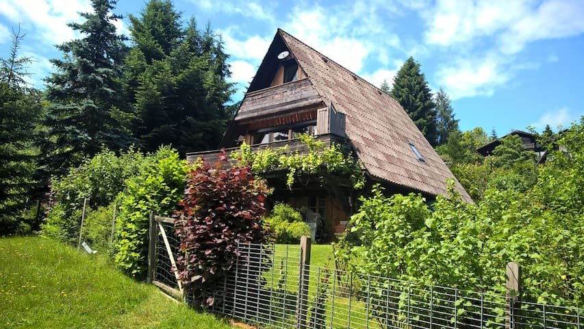 Charming get away in nature with garden and space - Siegsdorf - Inny