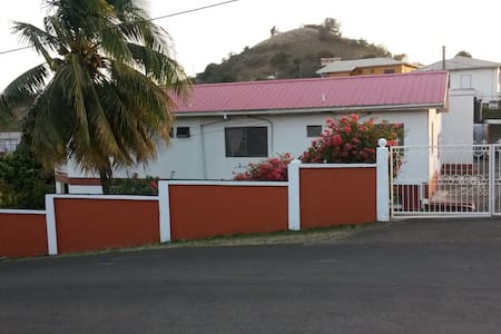 very nice , large yard and friendly caretaker - The Lime