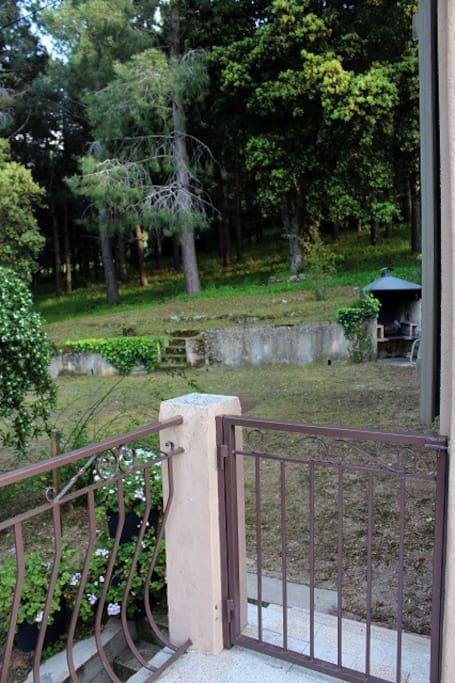 pinède privée de 2 hectares et terrasse fermée par des portillons