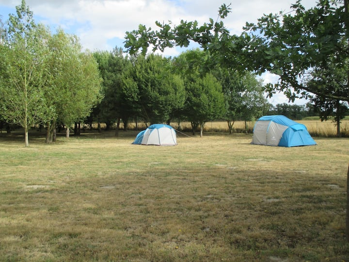 Le Cerisier Anglais Camping Emplacement 1