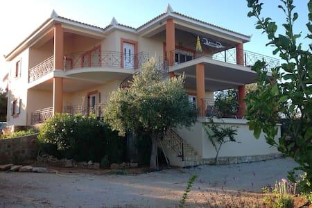 Villa Buena Vista - Vasilitsi - Huvila