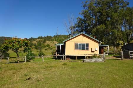Retro - Orange Tree Cottage