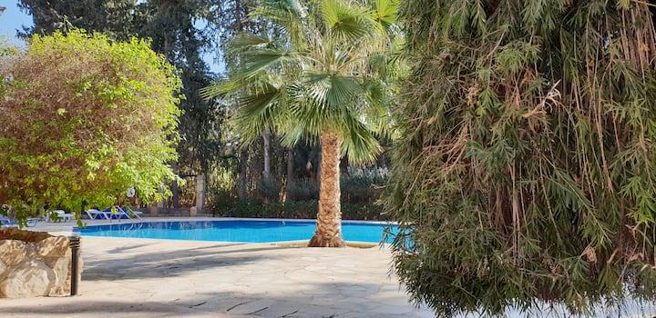TRX & YOGA in Paradise Gardens 4 - Luxury Appart