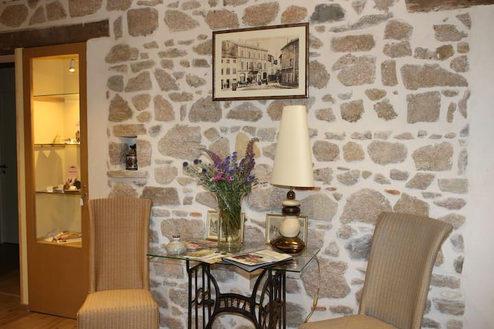 aux pierres magiques - Saint-Laurent-de-Chamousset - Bed & Breakfast