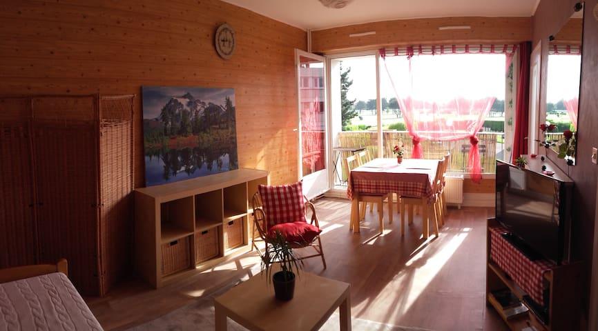 Charmant petit studio dans la banlieue lilloise - Marcq-en-Barœul - Apartemen