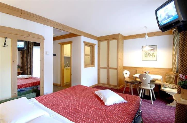 Studio with balcony 100m from town center - San Martino di Castrozza - Apartamento