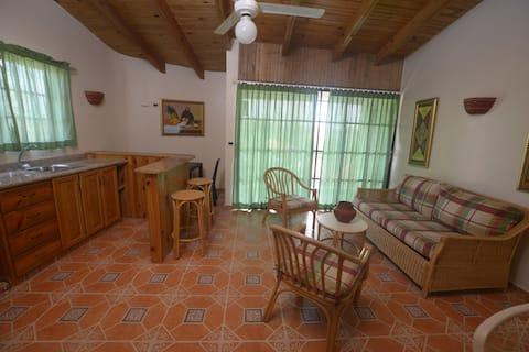 公寓E ( DOMINICUS, BAYAHIBE ) in公寓¨ GINA ¨