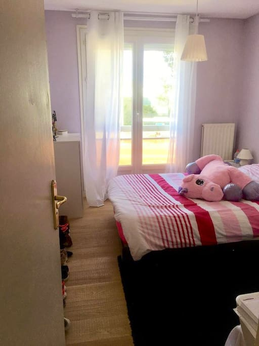 Une grande armoire se trouve dans cette chambre (avec un coin dressing)