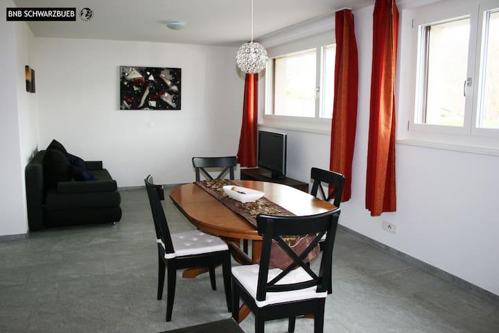 BnB Schwarzbueb in Nunningen - Nunningen - Lägenhet