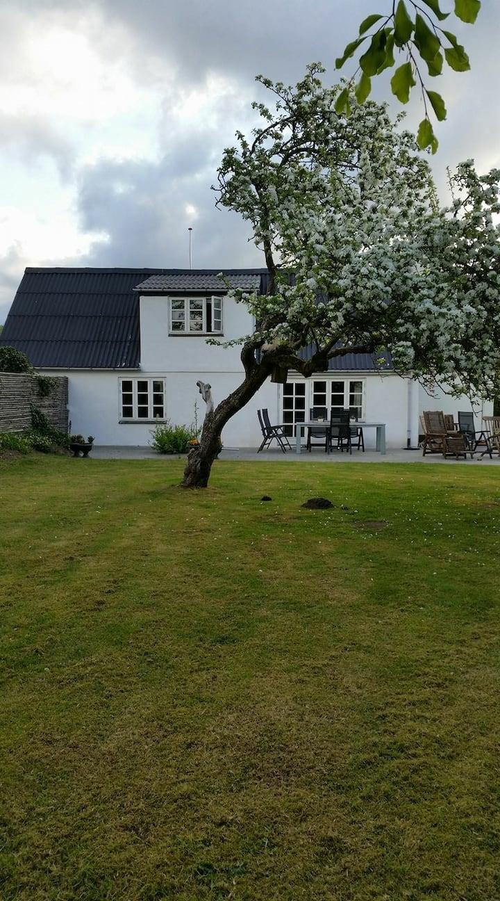 Hyggeligt hus i Hjørring ,landhus med kæmpe have