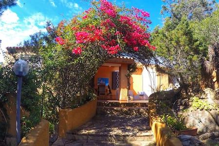 Casa Indipendente con giardino per un totale relax