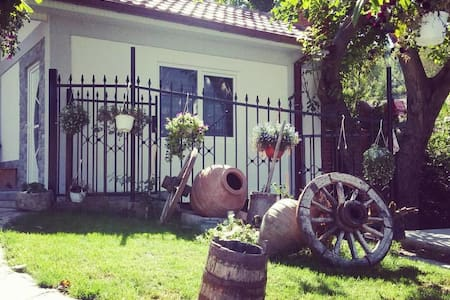 Villa Ruma Dabnishte Studio