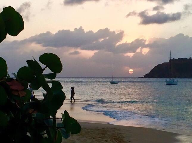 Island Haven B&B Antigua - The Tiny Paradise Room