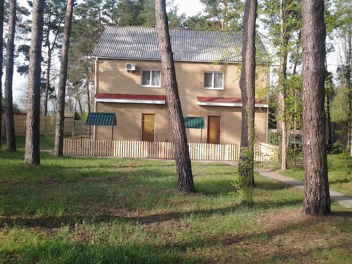 2 комнатный дом в лесу, на берегу р.Десна. (50 м)