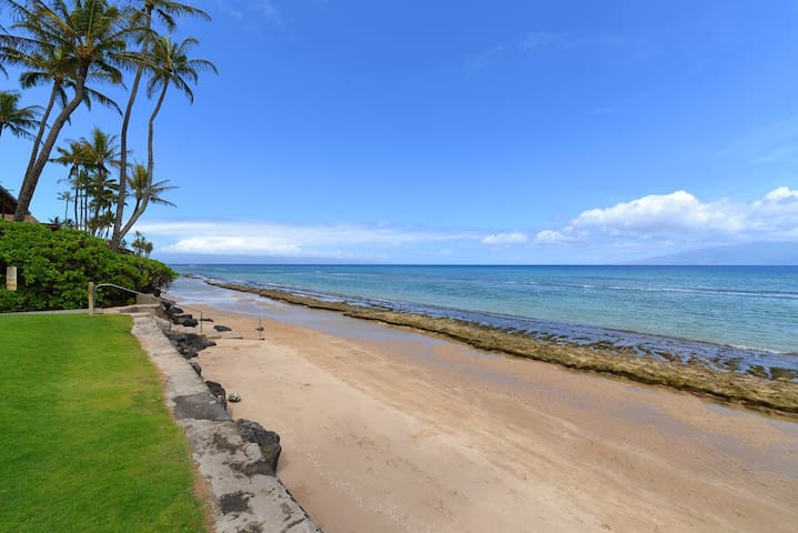 PM 316* - Oceanfront Resort w/lush garden view