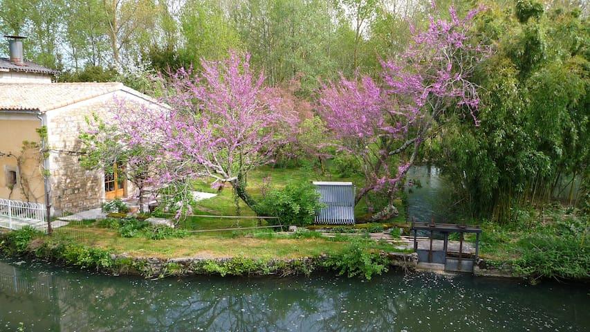 l'île aux bambous, maison écologique - La Crèche - Earth House