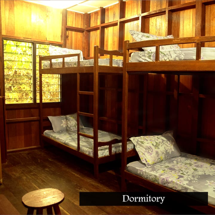 Kinabatangan Wildlife Lodge (Dorm)