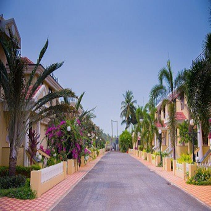 Drive Way Through The Gated Community