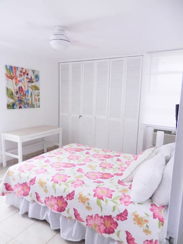 Second Bedroom with Queen size bed, AC and ceiling fan