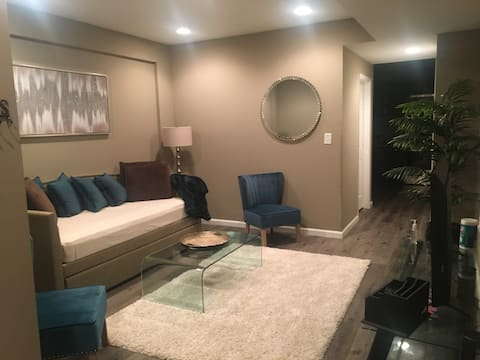 Private Luxury Apartment with FREE Parking