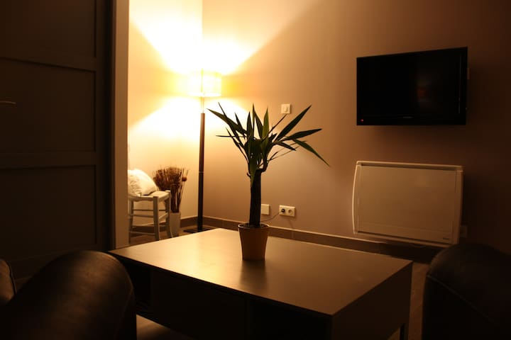 nest, 1 bedroom, quiet, access to the Jacuzzi. - Aussonne - Huoneisto
