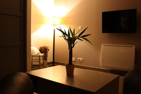 nest, 1 bedroom, quiet, access to the Jacuzzi. - Aussonne - Wohnung