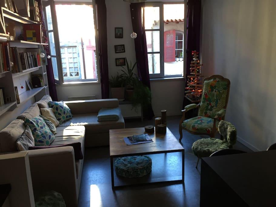 Voici le salon avec un grand canapé lit deux places. Les fenêtres sont en double vitrage.