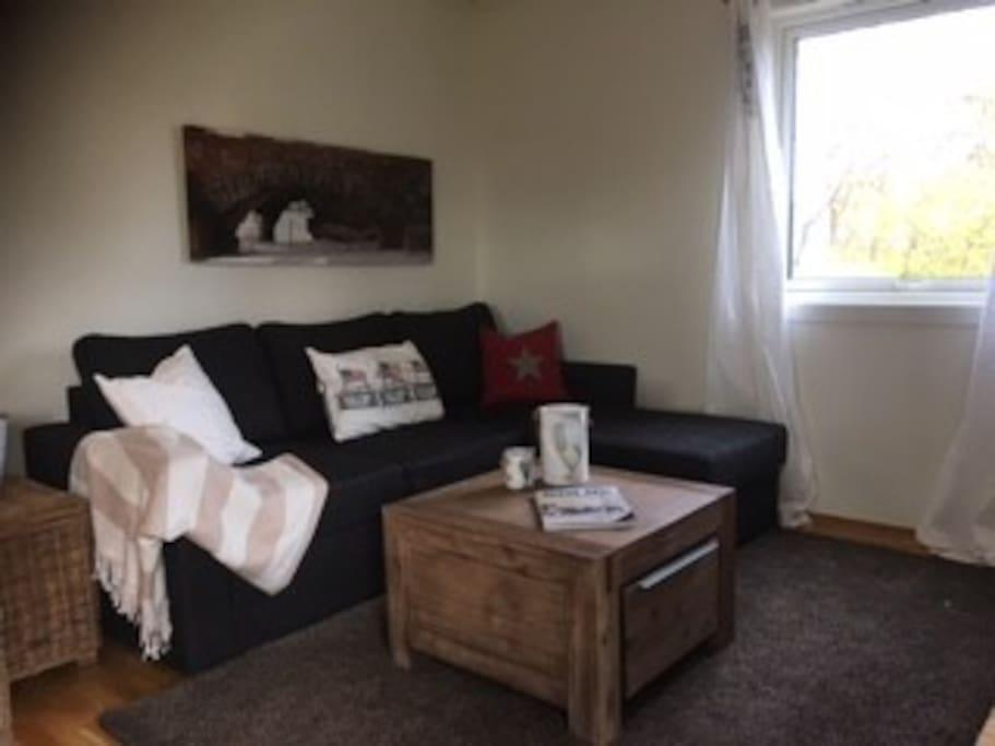 Hyggelig stue med sovesofa