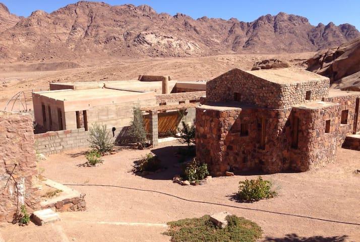 TLAAH Desert Center