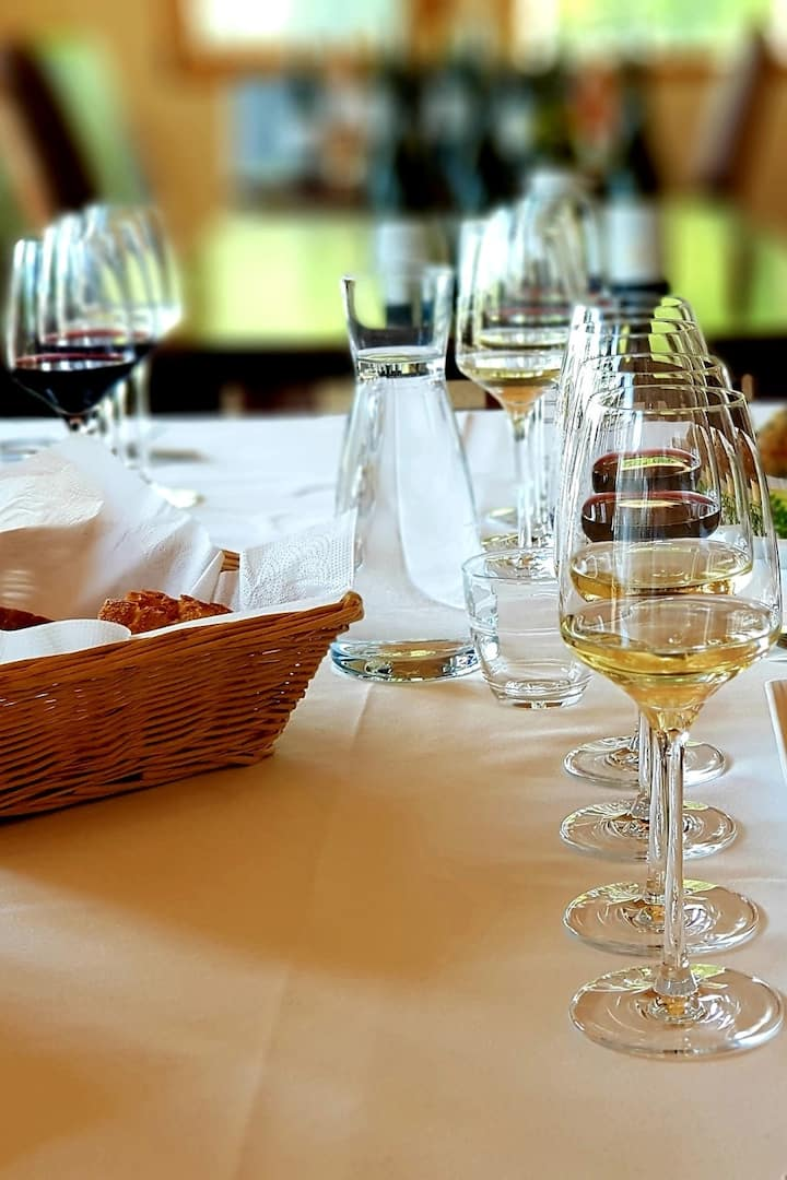 Wine and food pairing lunch