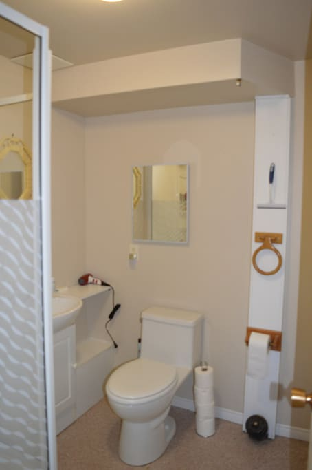 Your own neat and tidy bathroom with shower, sink, toilet, 2 mirrors. Soap, shampoo, conditioner and hair dryer provided.
