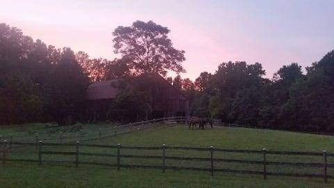 Private Apartment on a  Horse Farm