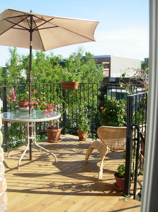 patio in the summer: flowers are not furnished:-)