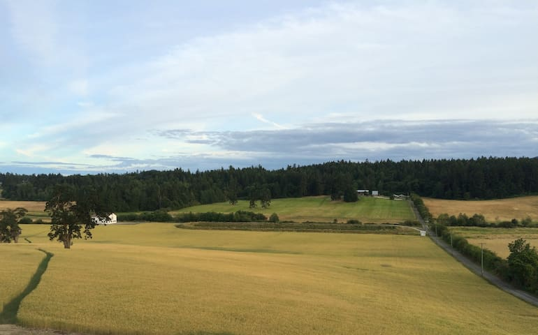 Incredible Farm Valley Views - Saanichton
