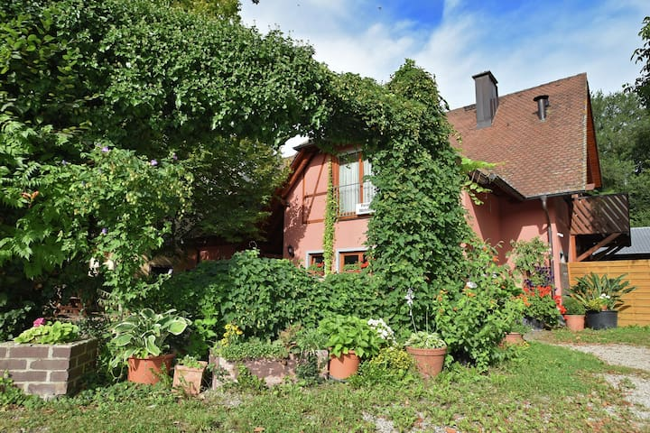 A comfortable, spacious holiday accommodation near the town of Freiburg.