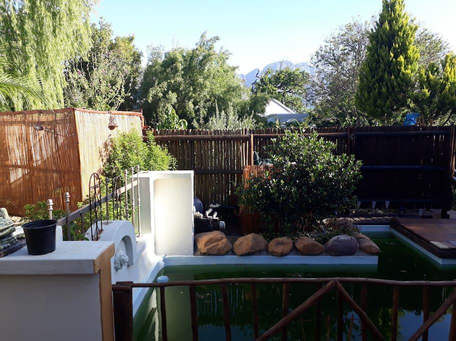 Garden & Plunge Pool