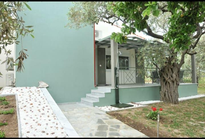 """Villa """"Elaeda Evdokia"""" Skala Prinos"""