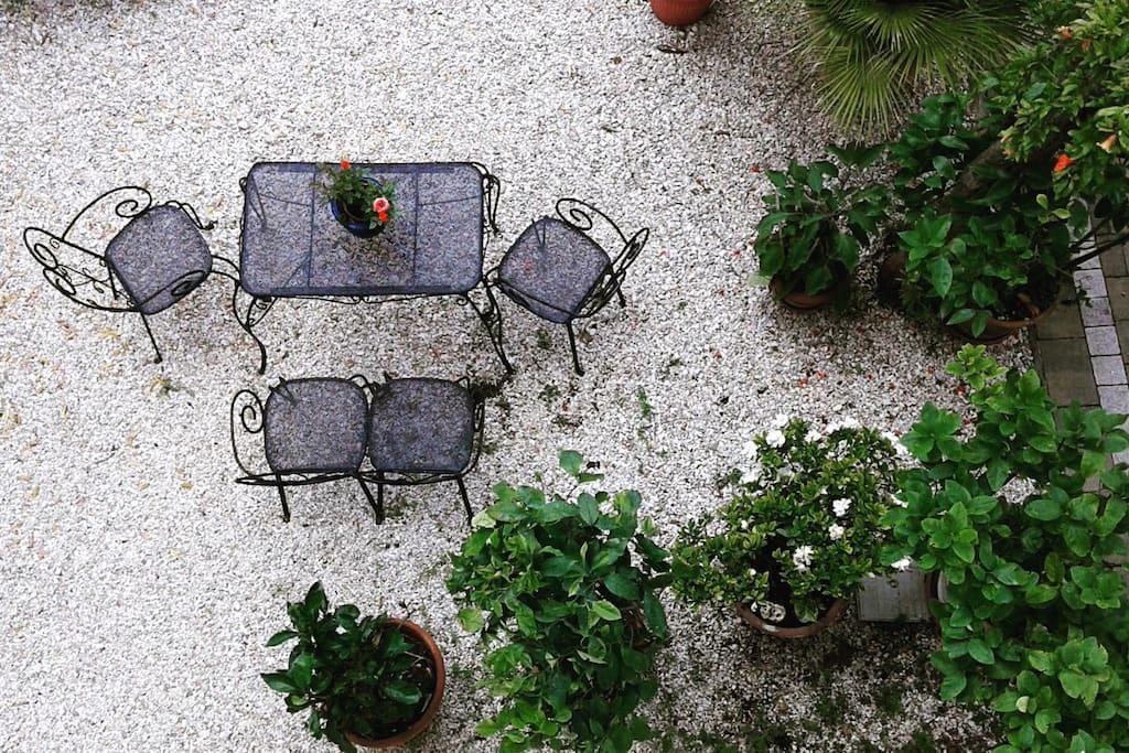 Giardino nel retro della casa Garden in the back of the house