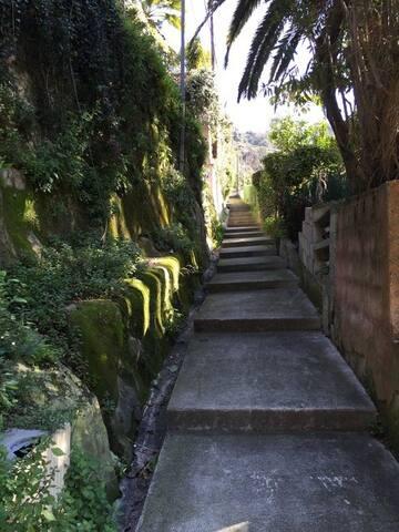 Les escaliers d'accès
