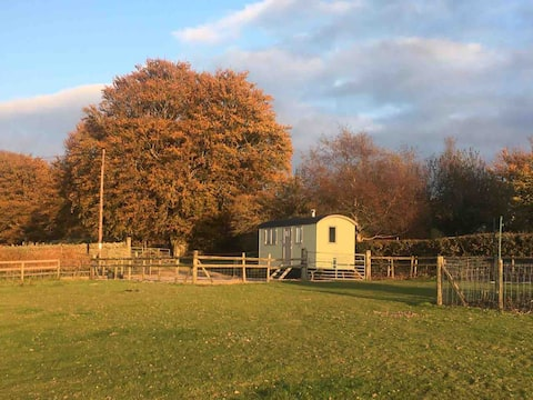 The  Cwtch Cwt (Cuddle Hut) mountain top retreat