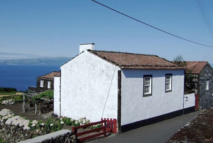 Casa do Castanheiro - S.Roque do Pico - Loma-asunto