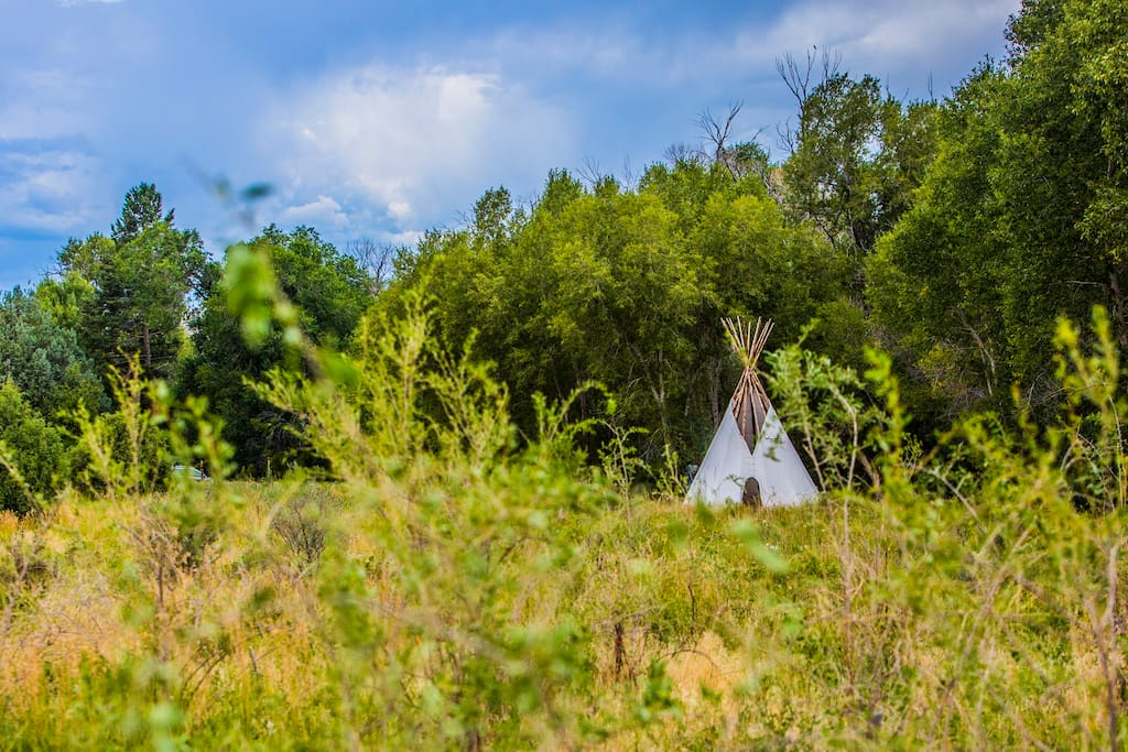 View of the Tipi from the Goji field