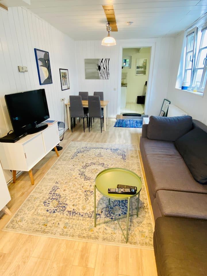Souterrain-Wohnung in Oldenburger Stadtvilla