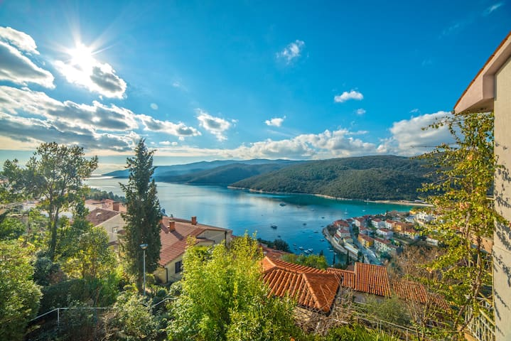 Apartments Mirta / One bedroom A3 AGAVA - Rabac